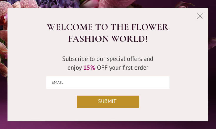 Welcome popup with discount